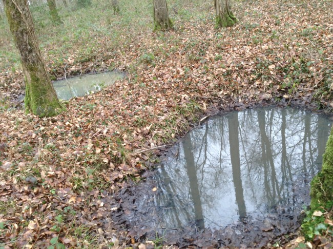 restes de trous dobus (visibles selon les conditions climatiques de  ~ Bois De Belleau